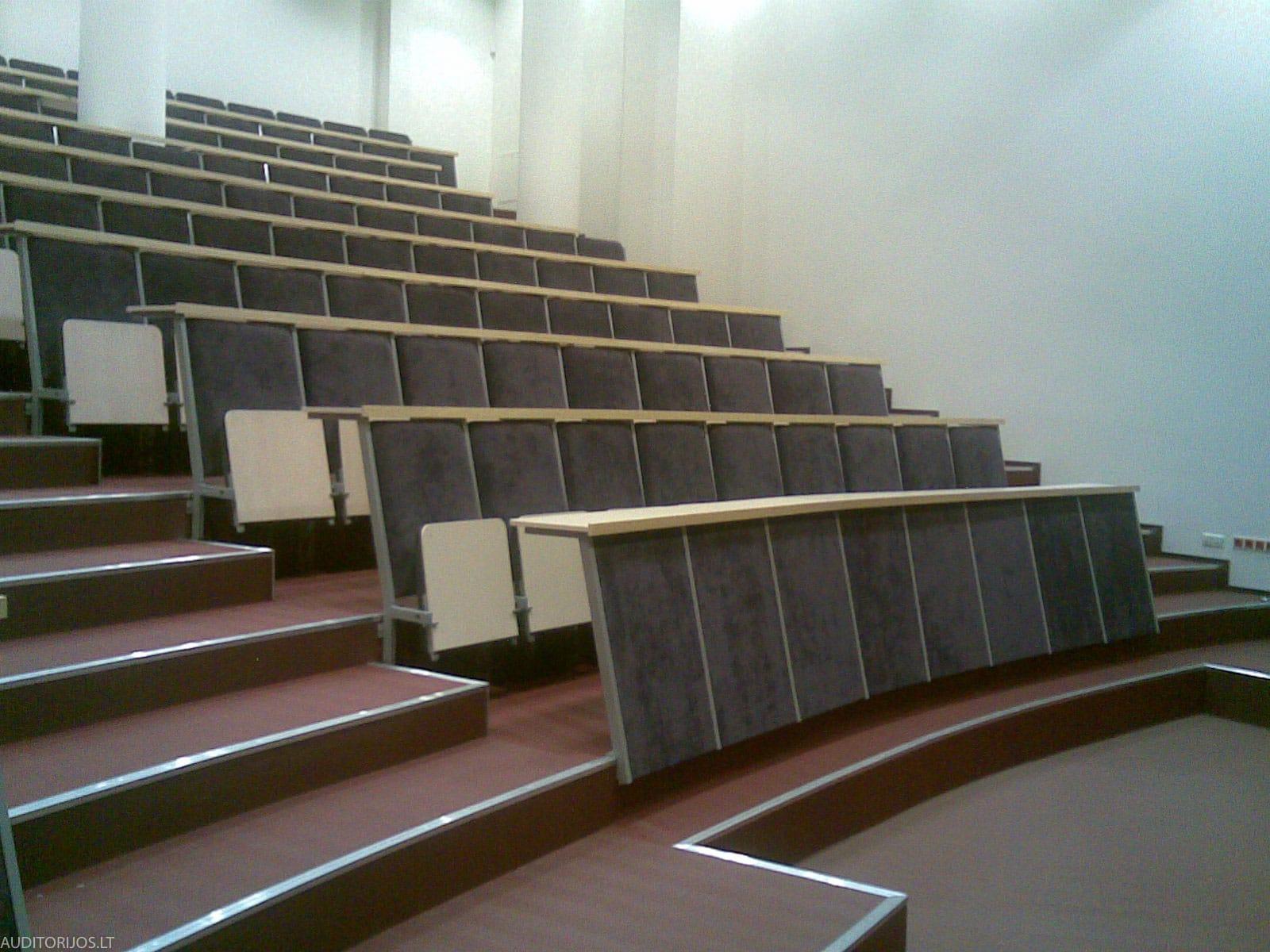 Mykolo Riomerio Universiteto Kedes 11102007