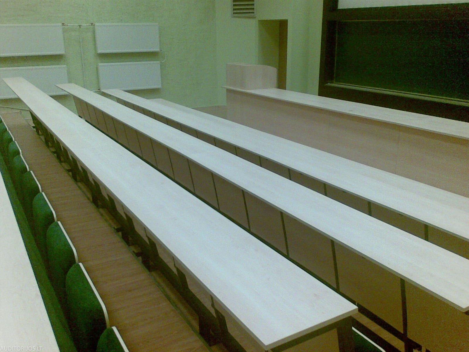 Vilniaus Gedimino Technikos Universitetas 20071004027