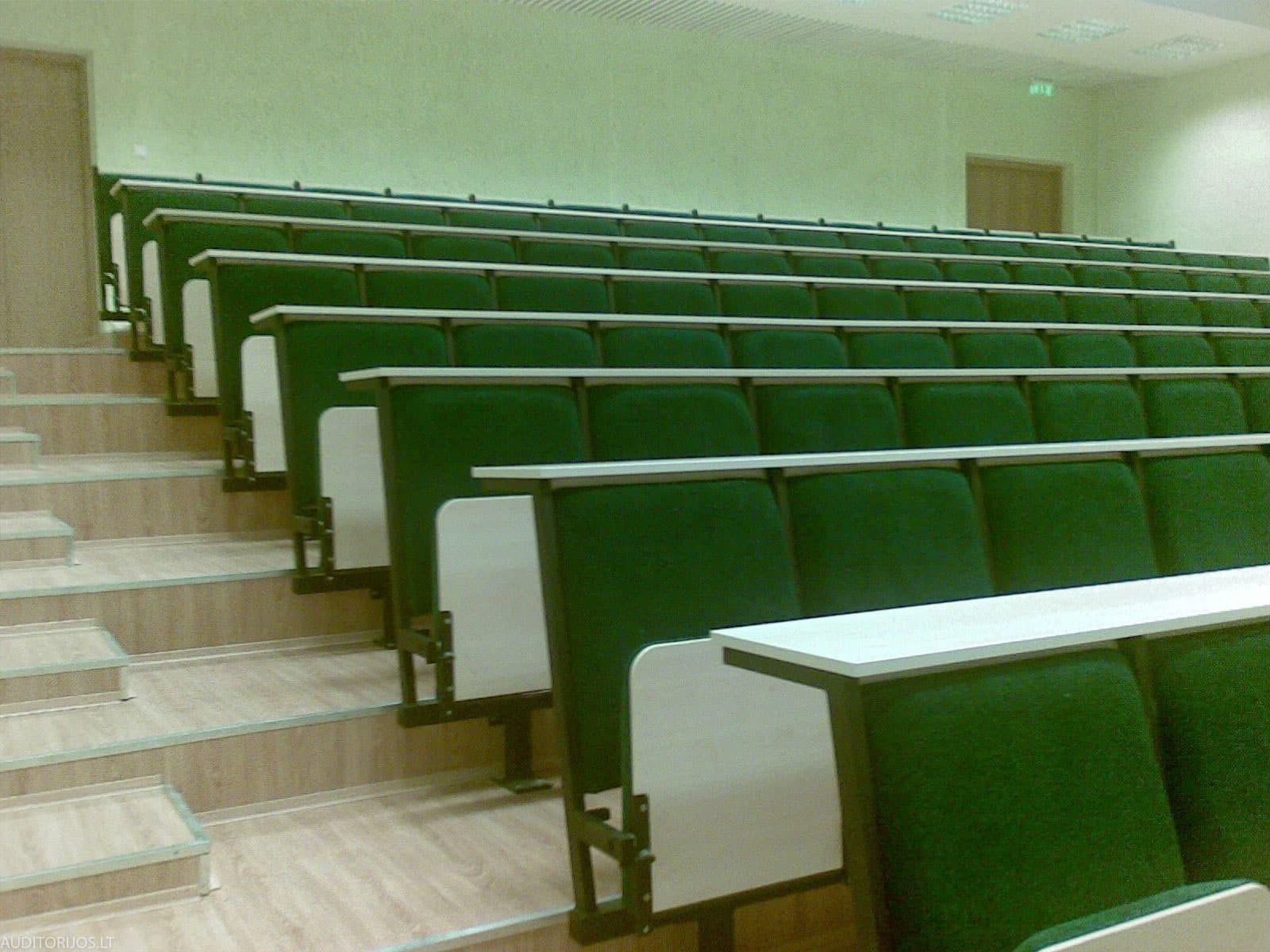 Vilniaus Gedimino Technikos Universitetas 20071004028